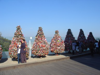 Things that look like Christmas trees from a far point of view.