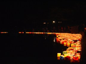 Many people came to look at the lanterns.