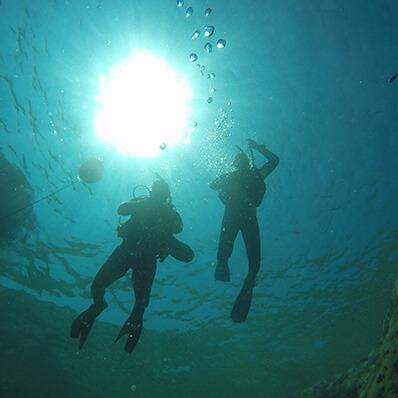 diving19