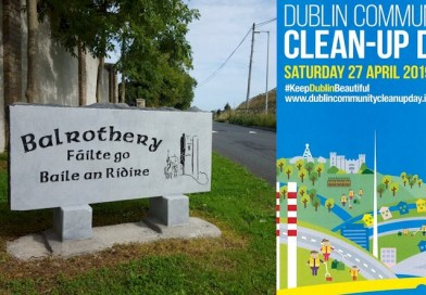 Dublin Community Clean up Day