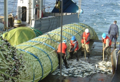 Fiske i Mauretanien