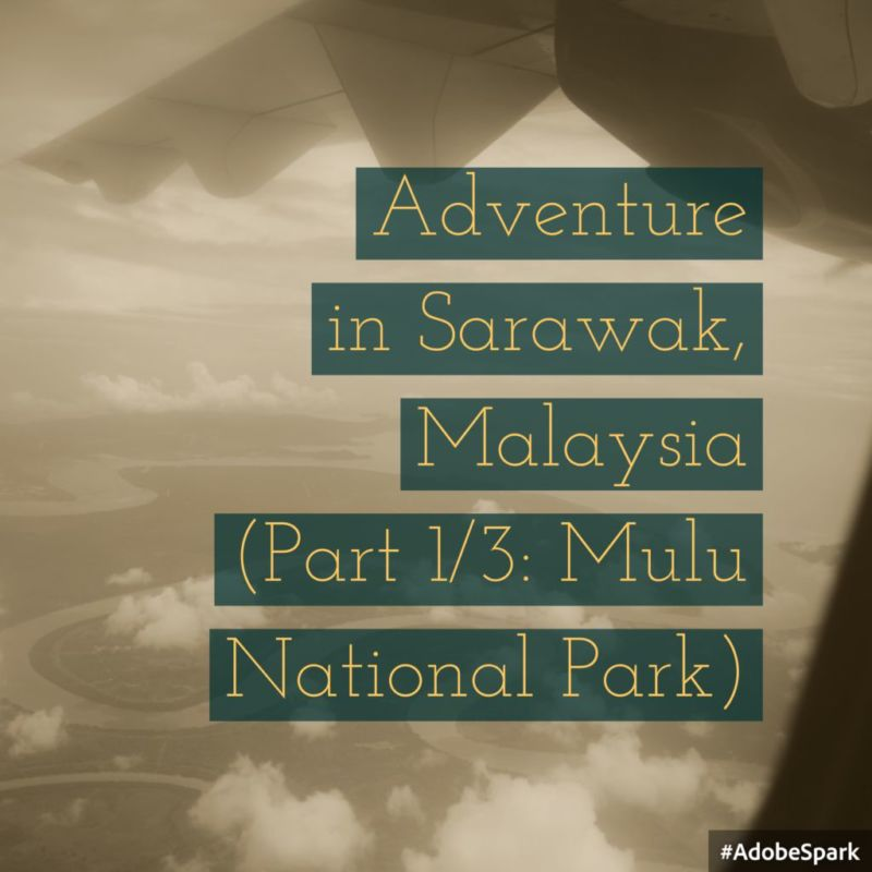 Adventure in Sarawak, Malaysia (Part 1/3: Introduction to Kuching & Mulu National Park)