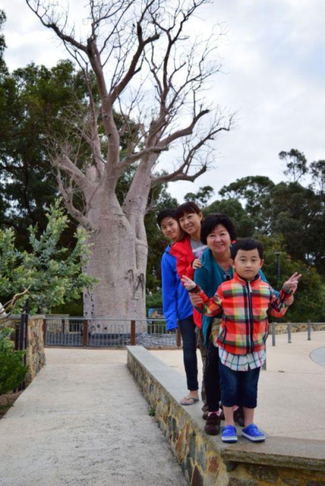 Kings Park , Perth