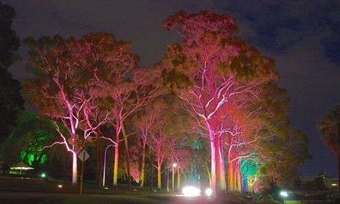 Kings Park in the evening, Perth