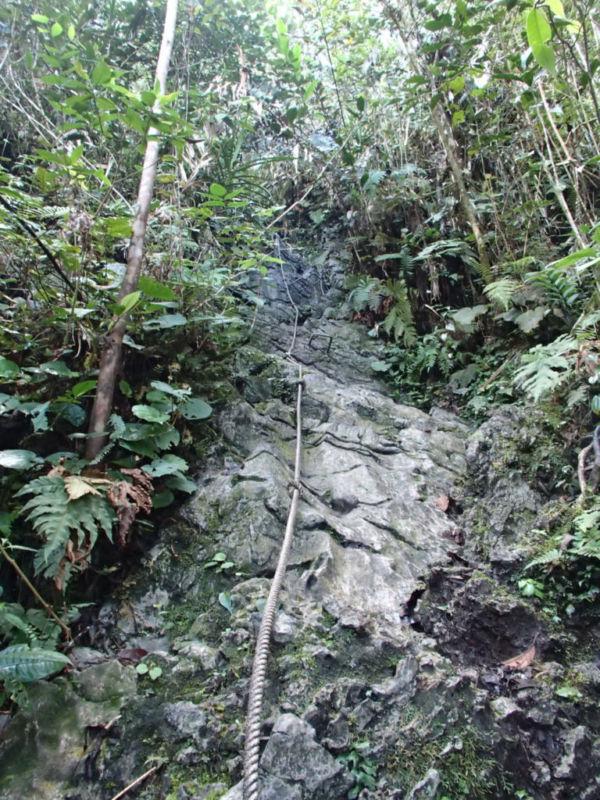 Climb to view Pinnacles