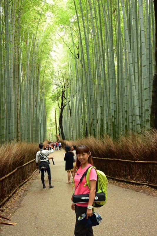 Bamboo Grove, Arashiyama @2015