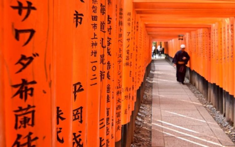 Senbon Torii, Fushimi Inari @2015