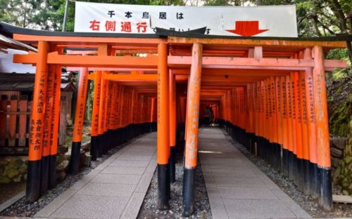 Opposite end of Senbon Torii, Fushimi Inari, Kyoto