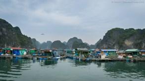 Fishing village, Lan Ha Bay (Vietnam)