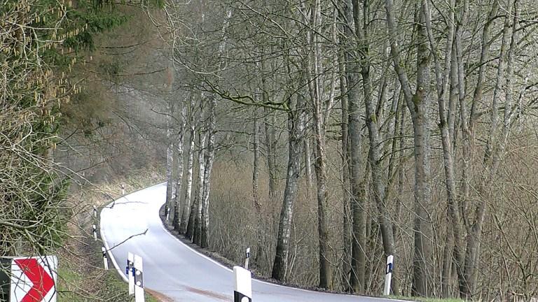 Straße nach Mellen wegen Baumfällarbeiten gesperrt