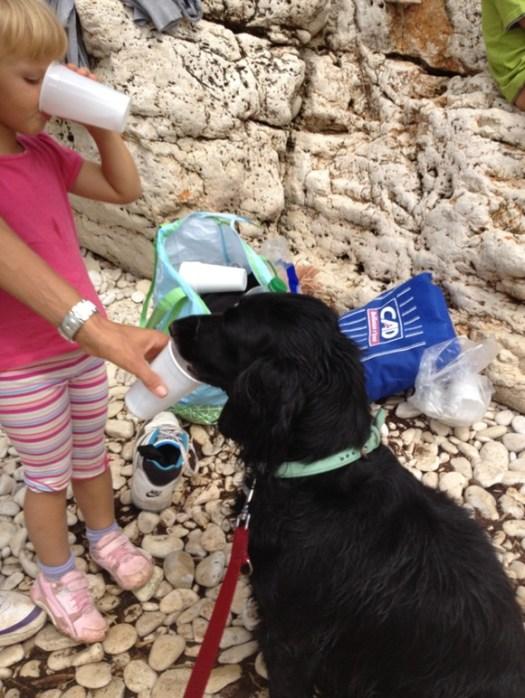 con il cane al mare
