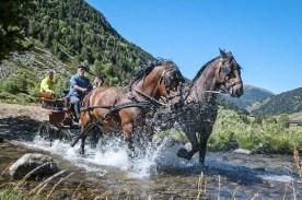 in-giro-con-i-cavalli-al_med_hr
