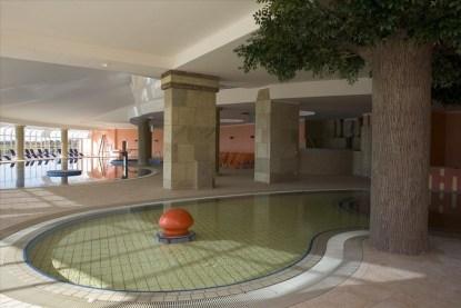 ptuj-hotel-primus-piscina_med_hr