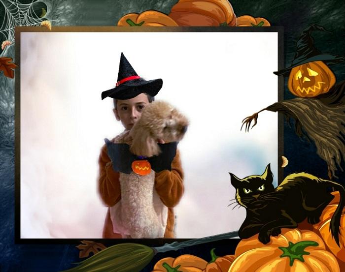 Costume da pipistrello per cani