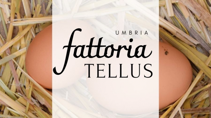 Fattoria Tellus: una fattoria didattica inclusiva in Umbria