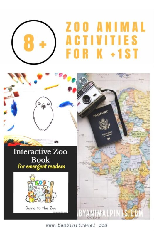 8+ Zoo Animal Learning Activities for Kindergarten and First Grade School Agers