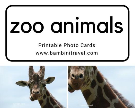 Zoo Animal Printable Photo Cards