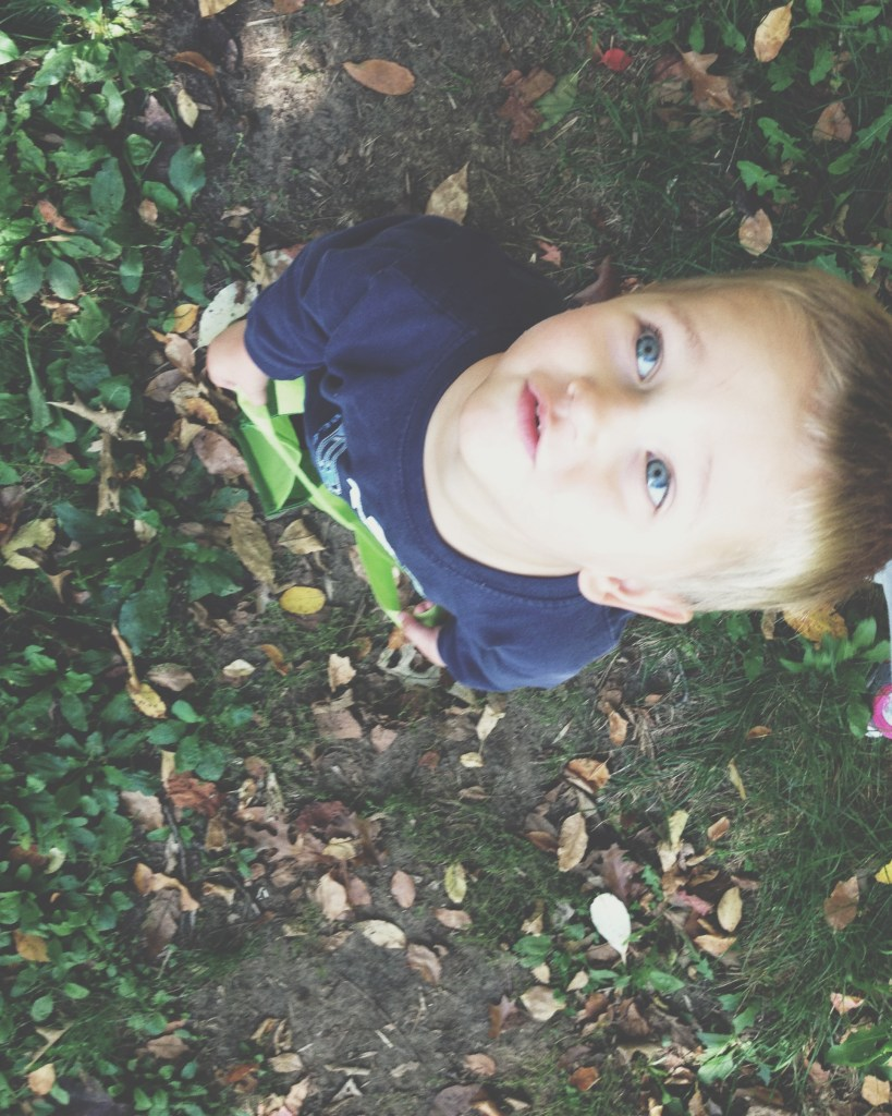 Fall Nature Walk With Toddlers And Preschoolers Bambini Travel