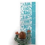 Little Acorns Height Chart - Azure Blue