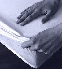 b sensible sheet