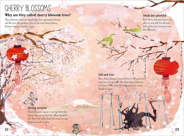 cherry blossom big book of blooms