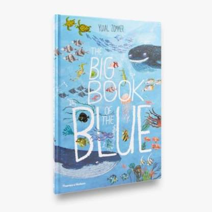 cover of big book of blue