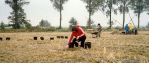 Ich bei einer Ausgrabung im Wendland in den 1980er Jahren - Archäologie Blogs