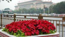 Große Halle des Volkes in Peking, der Hauptstadt Chinaa