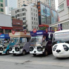 Chengdu Pandas auf dem China-Reiseblog