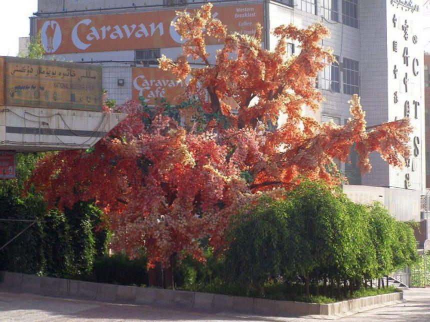 Kashgar Hoteleinfahrt