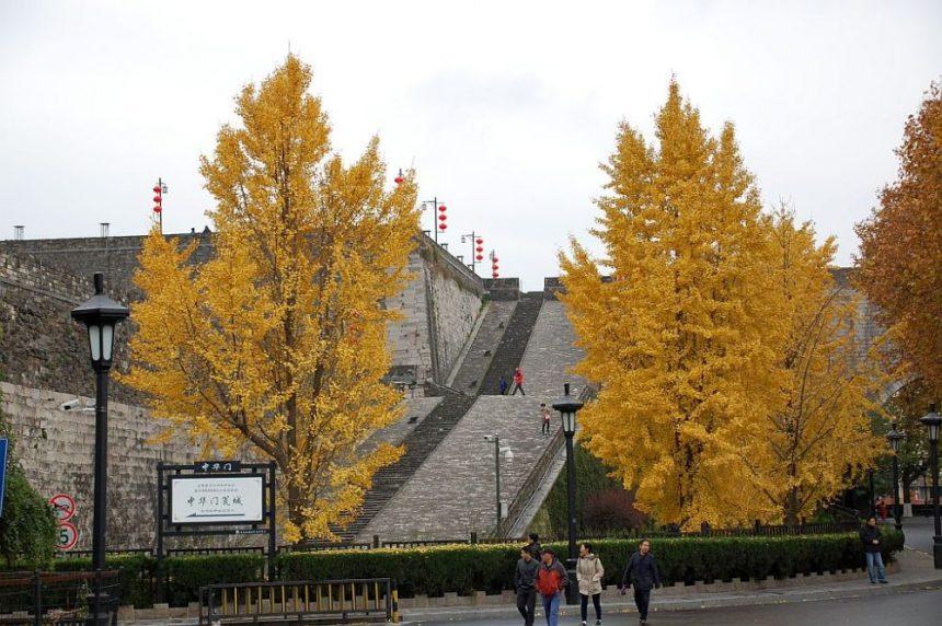 Stadttor in Nanjing
