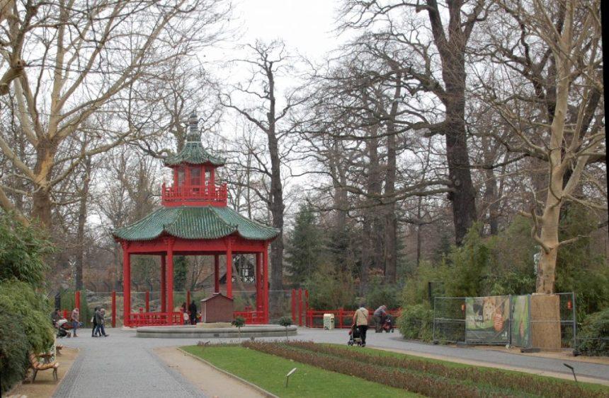 Berlin Zoo im Regen