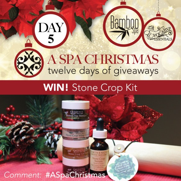 aSpaChristmas-Day-5-StoneCrop
