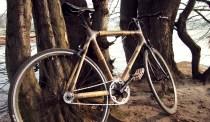 Fahrrad aus Bambusrohren