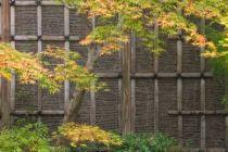 Japanischer Bambuszaun aus Bambuslatten