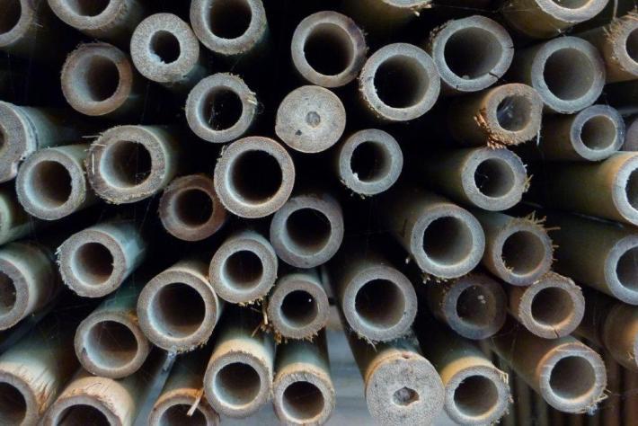 Bambusstäbe und Bambusstangen beim Bambushandel CONBAM günstig kaufen