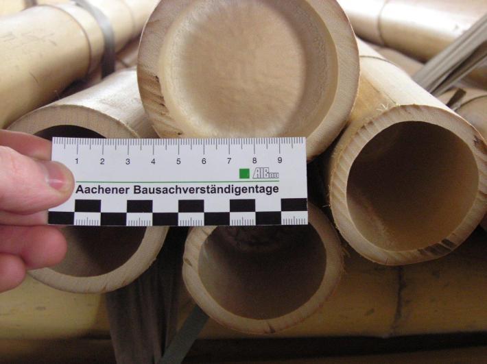Bambusstaebe Moso gelb aus China bei CONBAM günstig kaufen