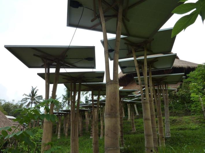 Solarzellen auf Bambusstützen CONBAM Bambushandel