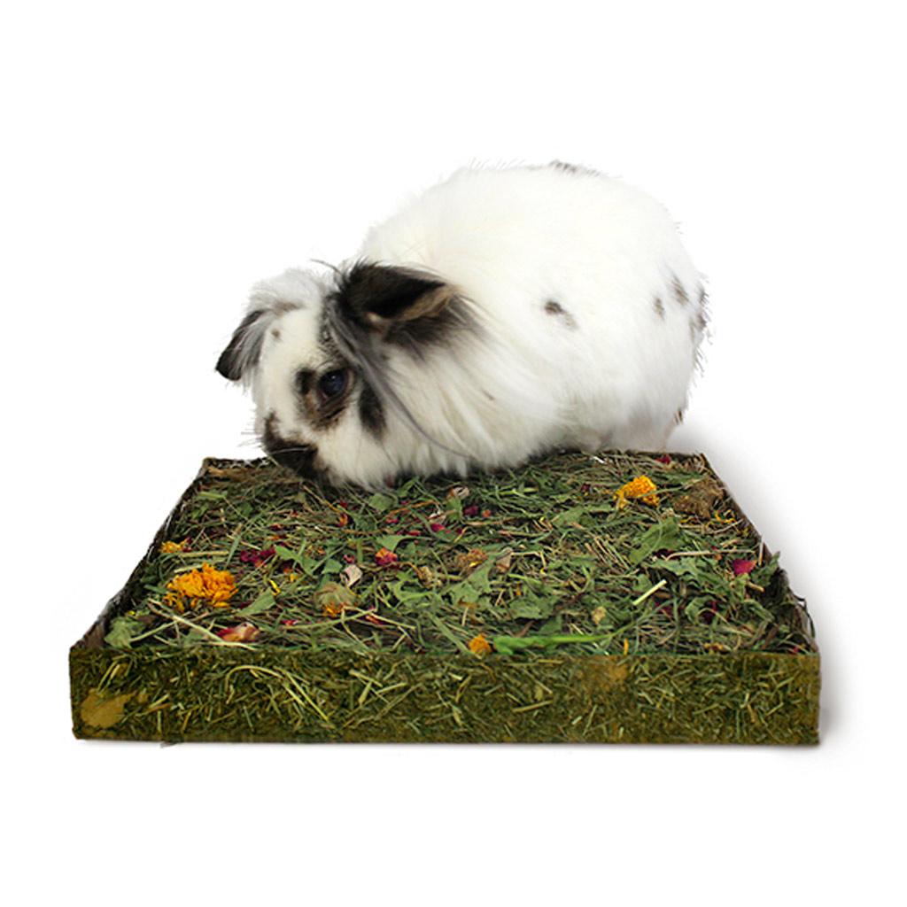 https www bamm paris fr lapins rongeurs accessoires tapis tapis creuser