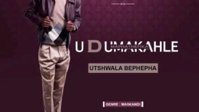 Dumakahle – Zikhona Izilingo