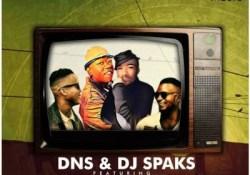 DNS & DJ Sparks – Dumelang Kaofela ft. Dvine Brothers