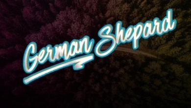 Burnwood Boyz – German Shepherd ft. Durban Soulz & DJ Lax