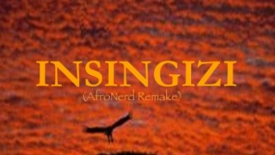 Lizwi – Insingizi (AfroNerd Remake)