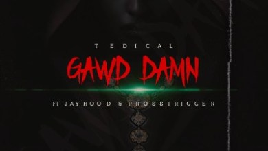 Tedical – Gawd Damn ft. Jayhood & Pross Trigger