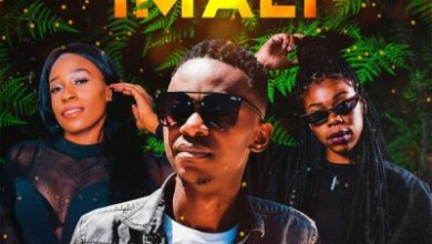 Lance Jnr – Imali ft. Amukelani & Lilly M
