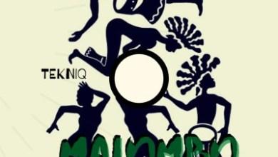 Tekniq & Dvine Brothers – Malombo (Original Mix)