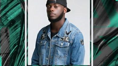 DJ Flaton Fox – Traveller