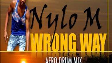 Nylo M – Wrong Way (Afro Drum Mix)