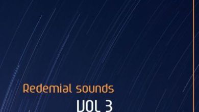 Buddynice – Redemial Sounds Vol.3 (31K Appreciation Mix)