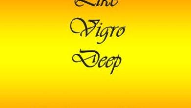 DJ Pre Tedzo – Like Vigro Deep